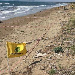 Beach Litter, monitoriamo le nostre spiagge!