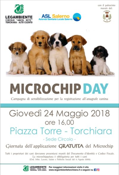 Gallery MicroChip Day – 2018