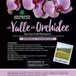 Nella Valle delle Orchidee